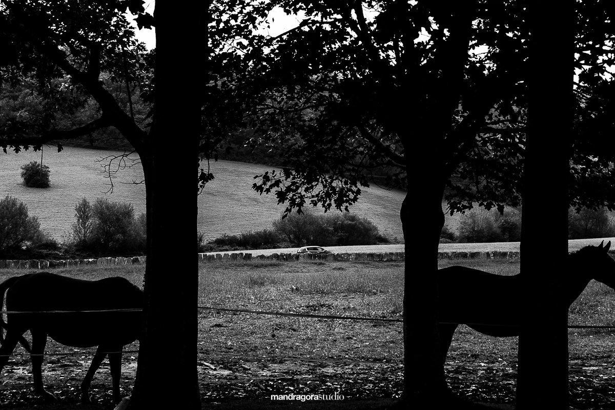 Fotografos-Boda-Machoenia 011