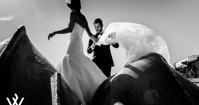 Fotógrafos del Año ( Las Fotos Premiadas )