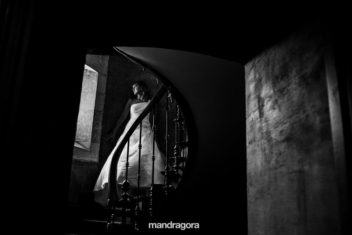 Boda-Palacio-Arteaga_0005